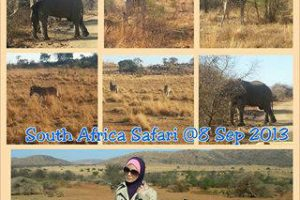 South-Africa-Trip_4